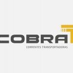 Leandro - COBRA Correntes Transportadoras